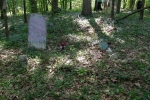 Probable burial location of Landon Miles, next to his first wife Sarah Martin in the Miles Family Cemetery (Hugh South)